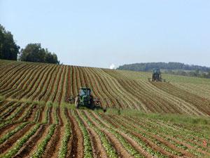 Tractors_CS10-09