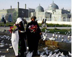 afghanistan-3-feb05